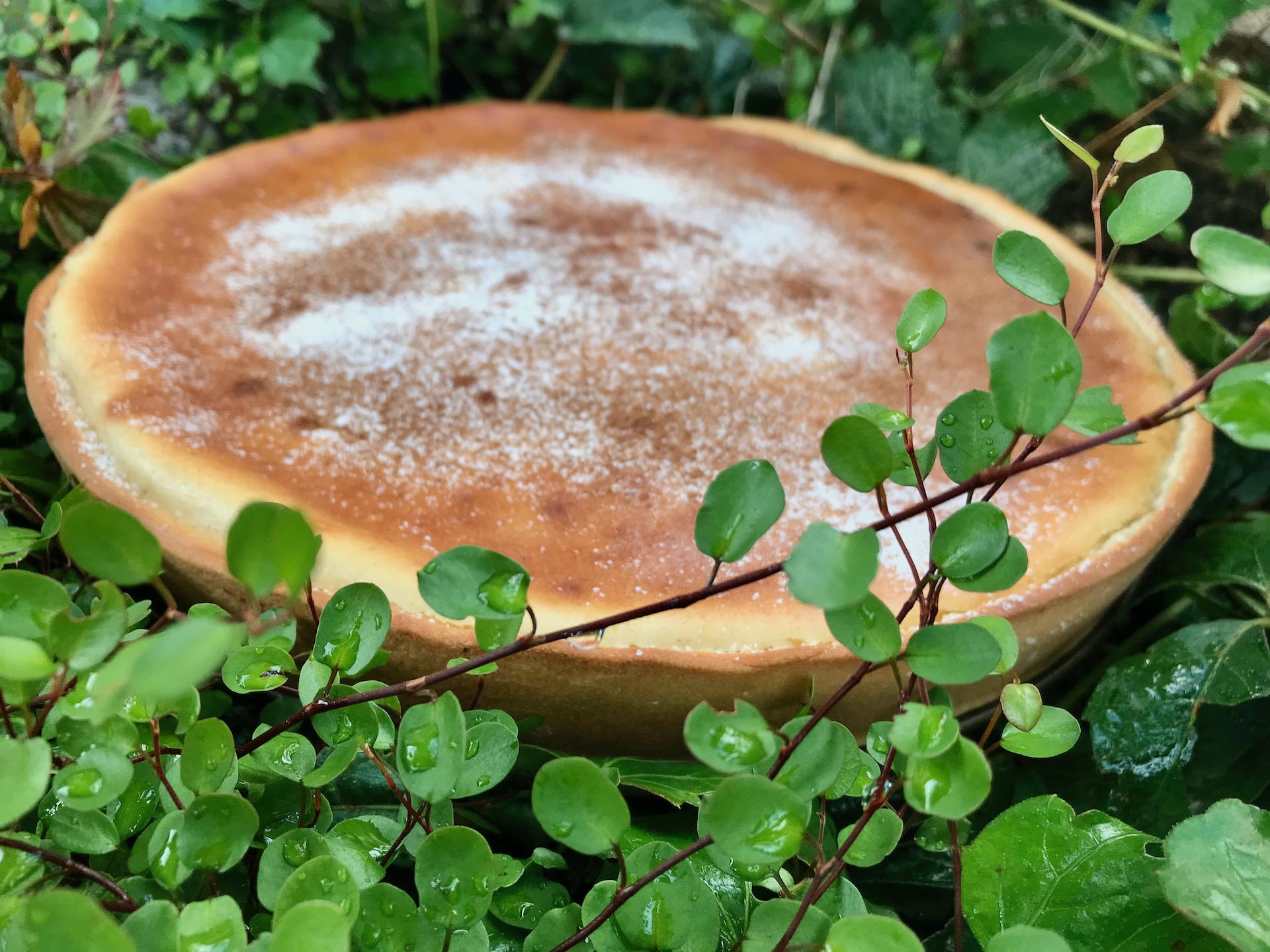 Pfälzer Rahmkuchen